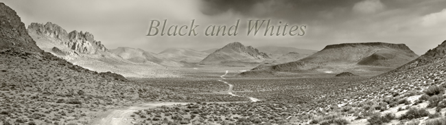 black and white photographs presented on the website of northern nevada photography